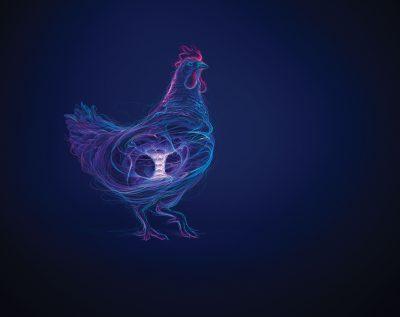 514-AB-Vista-poultry